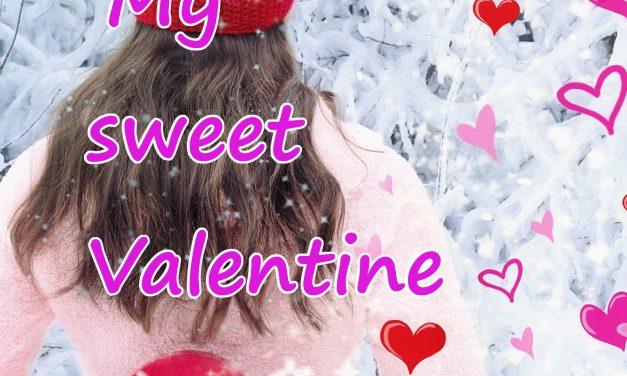 """Segnalazione """"My sweet Valentine – The Deceitful Series """"di Ilari C."""